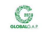Global-Gap-e1465821863865